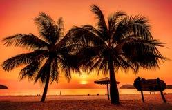 Den tappning tonade bilden av gömma i handflatan konturer mot solnedgång Royaltyfria Foton