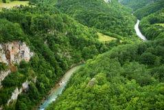 Den Tara floden i Montenegro, beskådar uppifrån arkivfoto