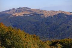 Den Tarnica kullen och Prowcza passerar i Bieszczady berg i sydostliga Polen Arkivbilder