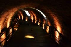 Den Templar tunnelen i gammal stadstunnland, Akko, och templar arkitektur, pelare etc. arkivbilder