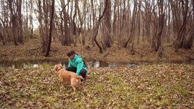 Den Tenage flickan daltar hunden i höstskogultrarapid, stock video
