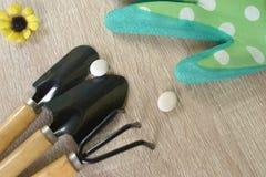 Den Teo skyffeln och brottningar och delen av grön handskelitlleguling blommar Arkivbild