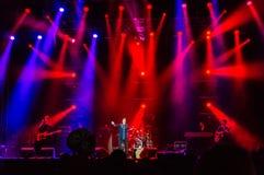 Den Texas musikbandet bor konsert Fotografering för Bildbyråer