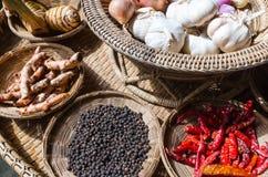 Den thailändska örten kryddar ingrediensuppsättningen Royaltyfri Fotografi