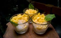 Den thailändska kokosnöten för klibbiga ris för efterrättmango mjölkar Arkivfoto