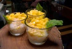 Den thailändska kokosnöten för klibbiga ris för efterrättmango mjölkar Royaltyfri Fotografi