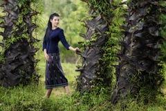 Den thailändska kvinnan i den traditionella dräktståenden för bygd under sockerpalmträden ror Arkivfoto