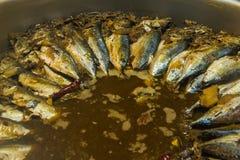 Den thailändska lokala matmakrillfisken kokade med salt Royaltyfri Foto