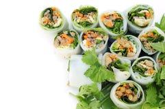 Den thailändska NUDELN applicerar stilgrönsakrulle. Royaltyfria Foton