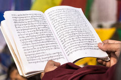 Den tibetana munken firar en ceremoni under bodhiträdet Arkivfoto