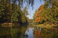 Den tidiga hösten parkerar in Tsaritsyno (Moskva) Arkivbilder