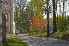 Den tidiga hösten parkerar in Tsaritsyno (Moskva) Royaltyfri Bild