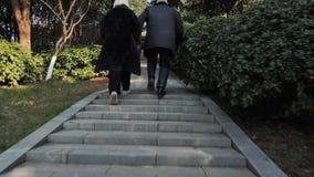 Den tillbaka sikten av höga par som uppför trappan kör i, parkerar att tycka om bekymmerslöst liv på solig dag stock video