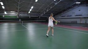 Den tillbaka sikten av kvinnaportionen och gående tillbaka studsa klumpa ihop sig med racket Spelare för yrkesmässig sport som ha stock video