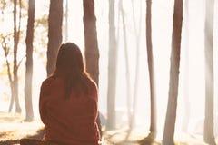 Den tillbaka sikten av sammanträde för den unga kvinnan i naturen parkerar fotografering för bildbyråer