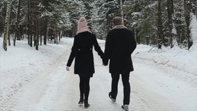 Den tillbaka sikten av unga och härliga par går i den vinterskogMilennials mannen och kvinnan som har gyckel Vinter lager videofilmer