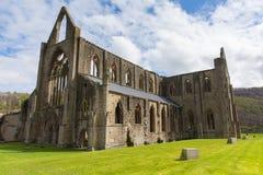 Den Tintern abbotskloster nära Chepstow Wales UK fördärvar av kloster Royaltyfri Fotografi