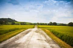 Den Tipical landsvägen i Tuscany bygd kallade den vita vägen - Italien arkivfoto