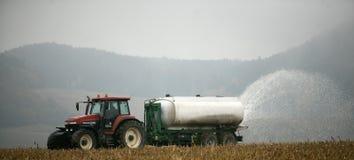 den tjeckiska bondelysicen mjölkar protest Arkivbild