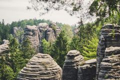 Den tjeckiska sommargräsplanskogen med vaggar royaltyfri bild