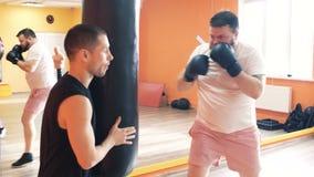 Den tjocka mannen i handskar slår den stansa påsen i idrottshall Förlust för individuell vikt borrar för fyllig grabb Den boxas u arkivfilmer