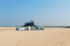 Den tokiga krabban av Kochi royaltyfria bilder