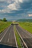 Töm asfalthuvudvägen med ecoduct Royaltyfri Fotografi