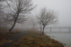 Den tomma bänken på parkerar nära dammet vid den dimmiga dagen, minimalistic kall säsongplats bänk på sjön i dimman i skogbänken  arkivfoto