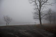 Den tomma bänken på parkerar nära dammet vid den dimmiga dagen, minimalistic kall säsongplats bänk på sjön i dimman i skogbänken  arkivfoton