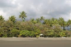 Den tomma Beachwith palmträdskogen och tömmer stolar, Costa Rica Royaltyfri Bild