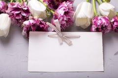 Den tomma etiketten och violetta och vita tulpan blommar på grå färger texturerat b Royaltyfria Foton