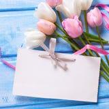 Den tomma etiketten, vit och rosa färger fjädrar tulpan, rosa band på blått w Royaltyfria Foton