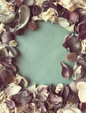Den tomma fotoramen och torkade blommor med tappningfiltret färgar Royaltyfria Foton
