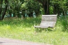 Den tomma gamla träbänken i ett stillsamt parkerar arkivbild