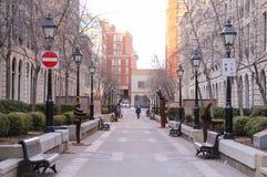 Den tomma gatan parkerar (den Rue le Royer nollan) nära basilika av Notre-Dame av Montreal Arkivbild