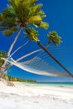 Den tomma hängmattan under palmträd och specificerar av sanden Arkivfoto