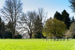 Den tomma picknicken bordlägger i en parkera Royaltyfria Bilder