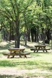 Den tomma picknicktabellen i ett stillsamt parkerar arkivfoton