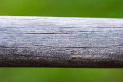 Den tomma tr?plankan med f?r naturbakgrund f?r suddighet gr?nt ljus f?r bokeh, banret eller titelraden f?r annonserar p? socialt  arkivfoto