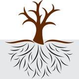 Den tomma treen med rotar stock illustrationer