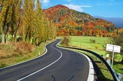 Den tomma vägen in mot det skogsbevuxna berget som är flamboyant av färghöst Royaltyfri Bild