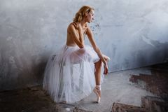 Den toppna slanka ballerina i en svart klänning poserar i studion Royaltyfri Bild