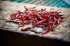 den torkade chilin pepprar red Royaltyfri Bild