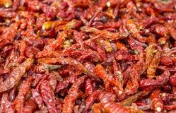 Den torkade röda chili är många Arkivfoton