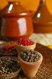 Den torkade röda varma chili, svart, vita peppar i gammal lera bowlar in Arkivfoto
