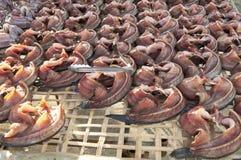 Den torkade randiga snakeheadfisken Royaltyfri Fotografi