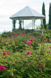 den trädgårds- gazeboen steg arkivbilder