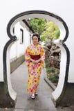 Den traditionella asiatiska japanska härliga kvinnan bär kimonot i en vårträdgård parkerar ställningen vid bambu tycker om fanen  Royaltyfri Bild