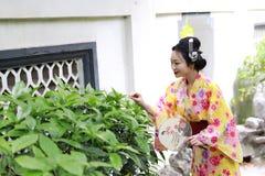 Den traditionella asiatiska japanska härliga kvinnan bär kimonot med fanen förestående som ler att spela på utomhus- vårträdgård Royaltyfria Bilder
