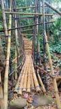 Den traditionella bambubron förband folk royaltyfria foton